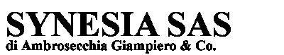 Synesia sas di Ambrosecchia Giampiero & Co.